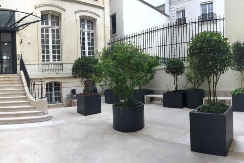 Plantes en pot, jardinieres, PARIS